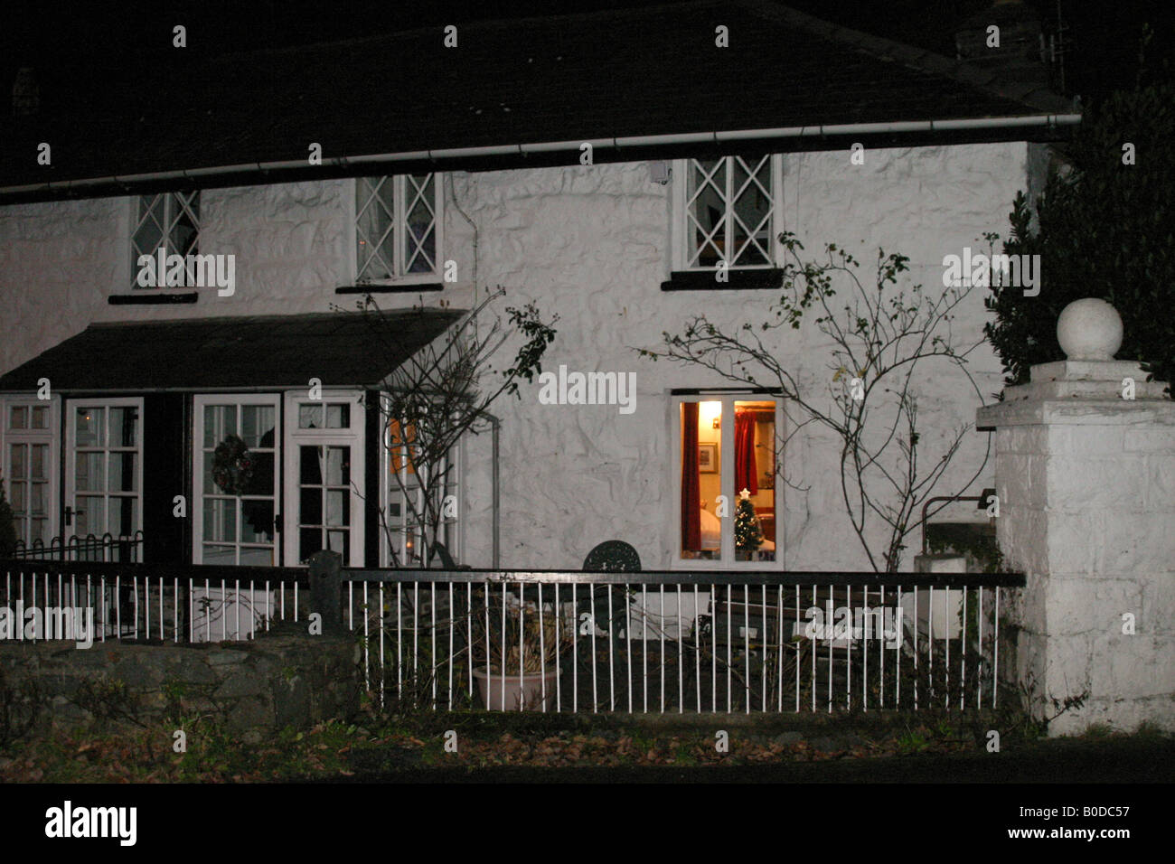 Exterior of Welsh country cottage at Christmas showing white walls and brightly lit living room window with Christmas - Stock Image