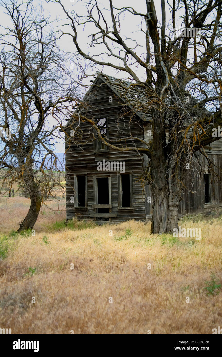 Old  home 'homestead' . - Stock Image