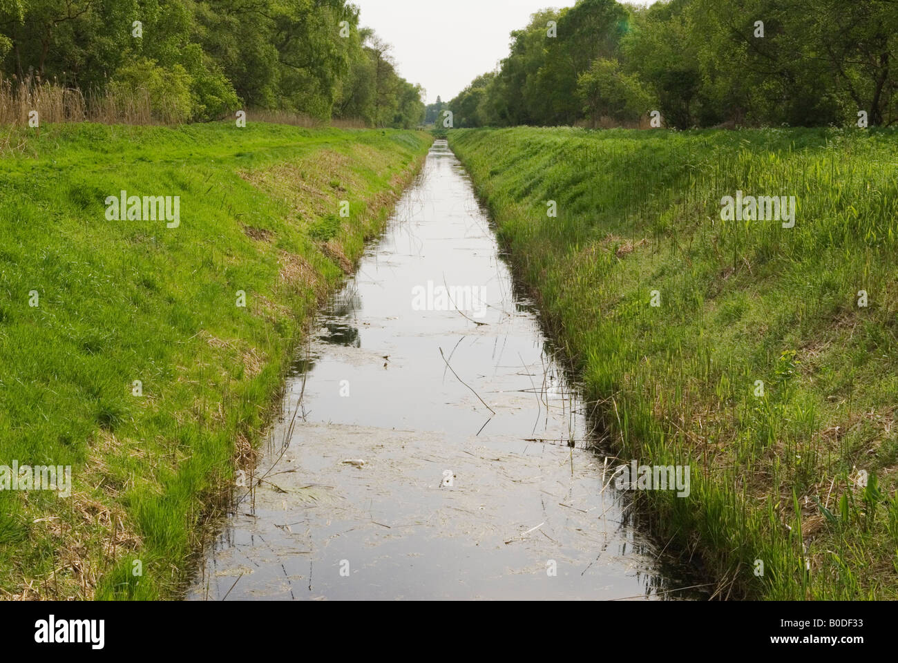 Holme Fen dyke drainage ditch Cambridgeshire UK  Lowest point in Britain Nature Reserve to left and right of dyke Stock Photo