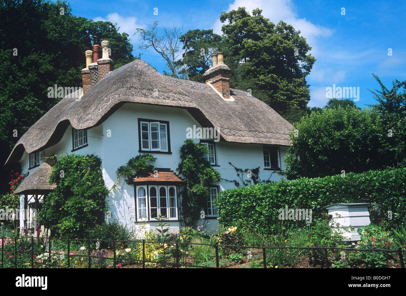 Thatched Cottage, New Forest, Hampshire. - Stock Image