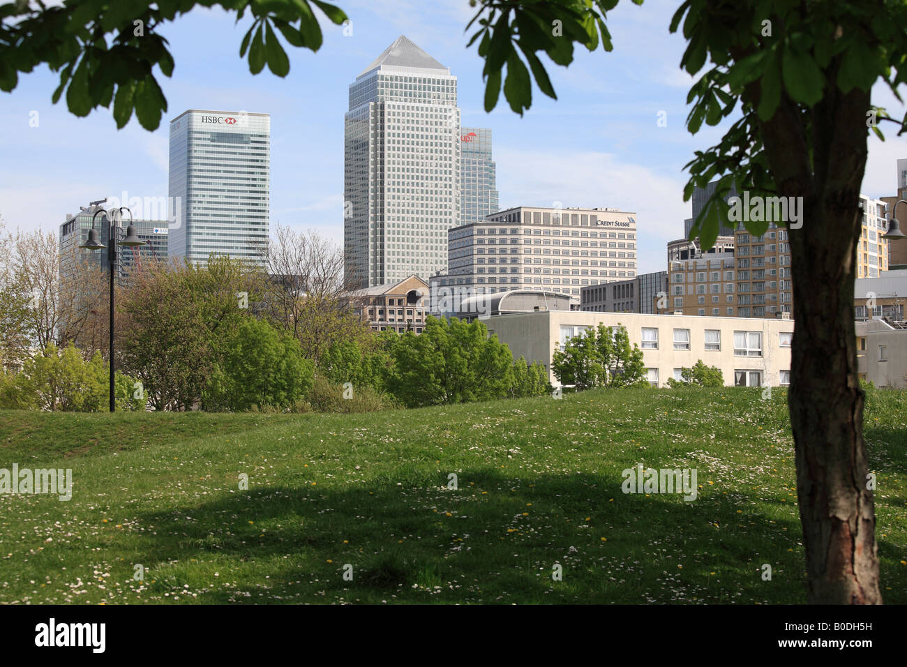 Canary Wharf viewed across park at Limehouse. - Stock Image