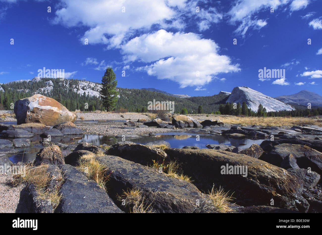 Glacially polished boulders in Yosemite National Park, California Stock Photo
