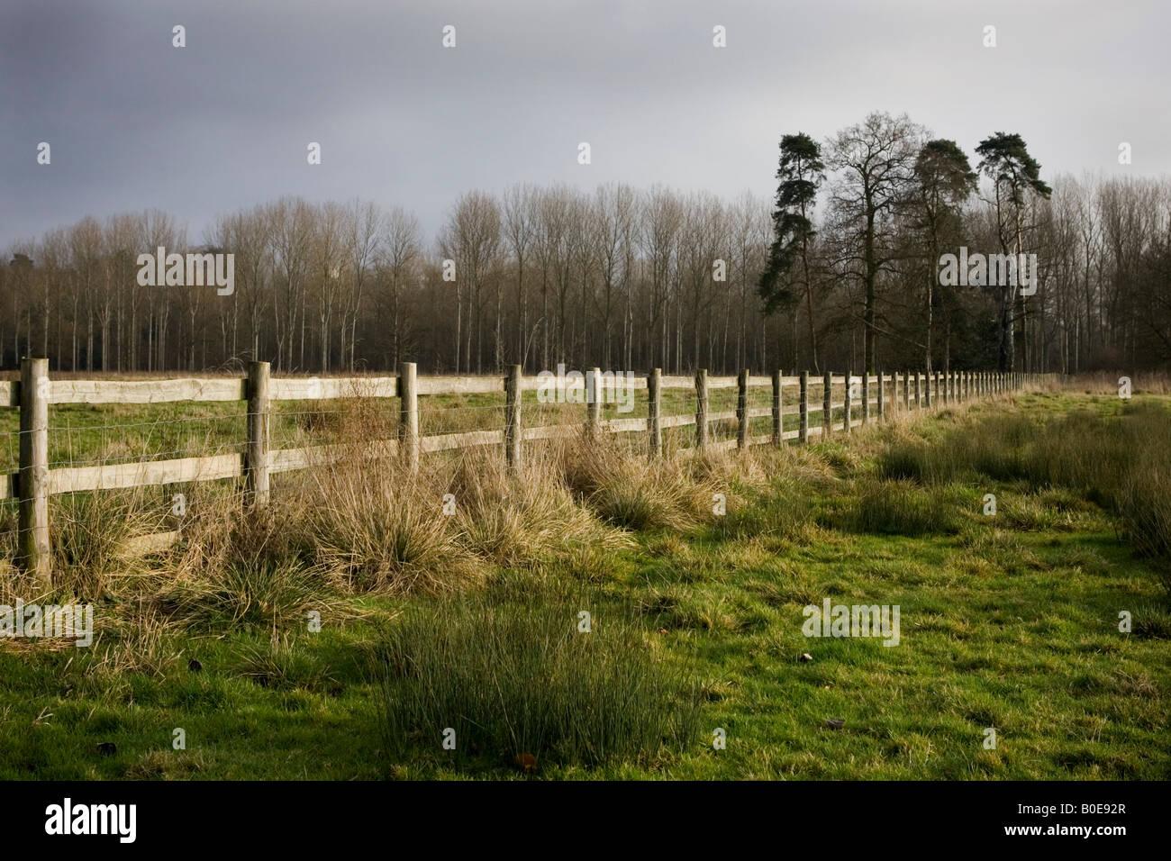 Fallow hay fields near Medmenham, Buckinghamshire, England. Stock Photo