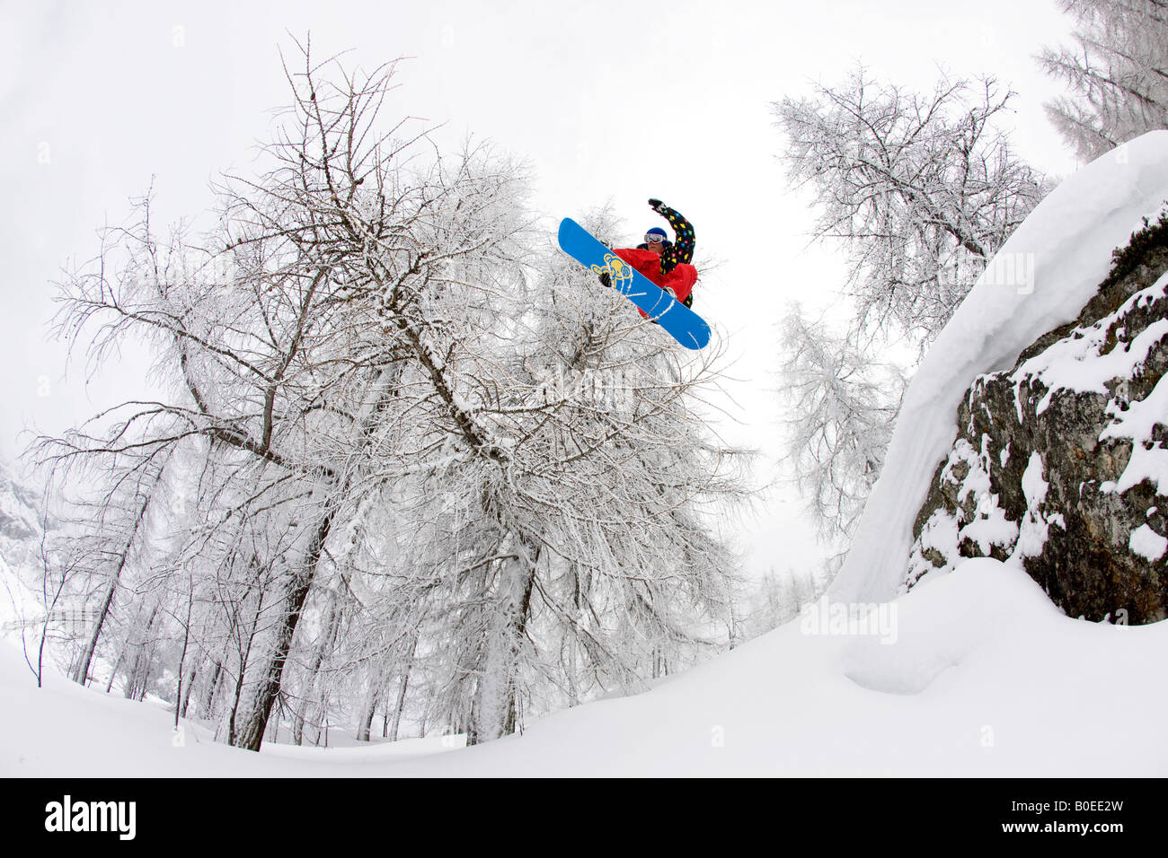 Snowboarder jumps from a rock and over branch. - Stock Image