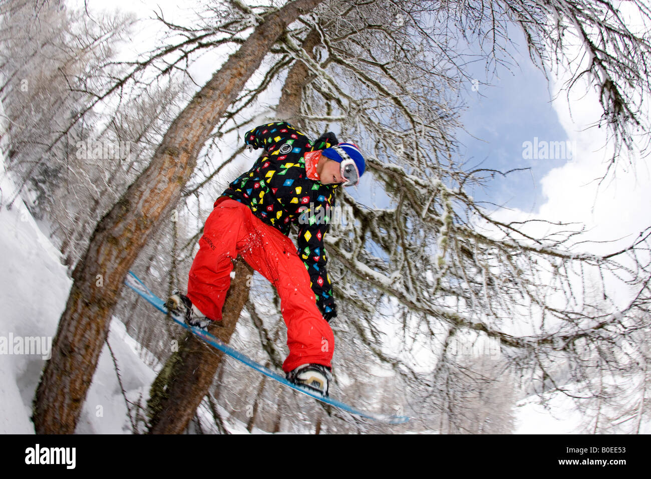 Snowboarder jumps through two trees off piste. - Stock Image