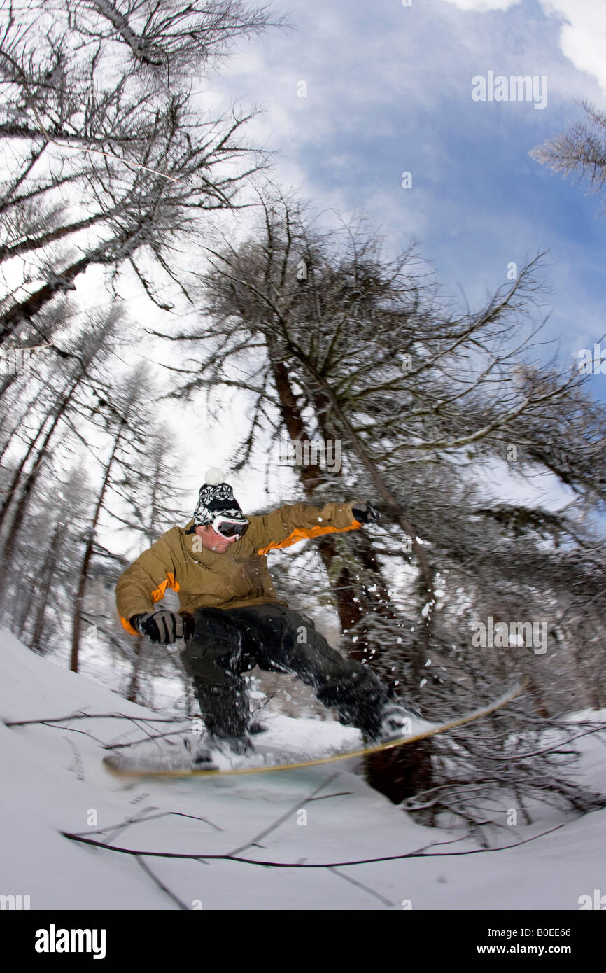 Snowboarder riding through trees off piste. - Stock Image