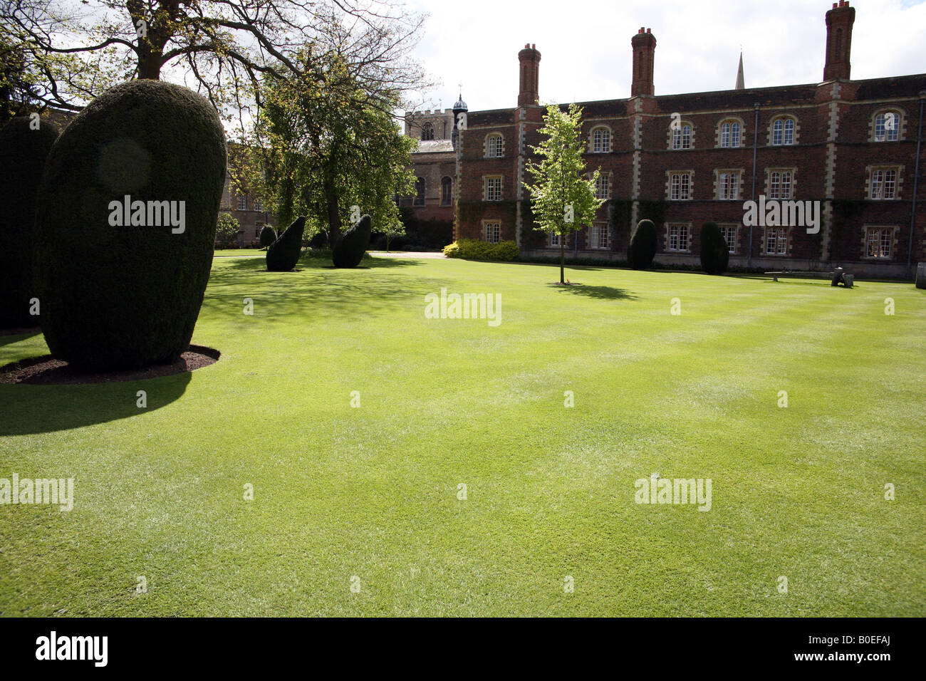 Well-maintained lawn at Jesus College, Cambridge Stock Photo