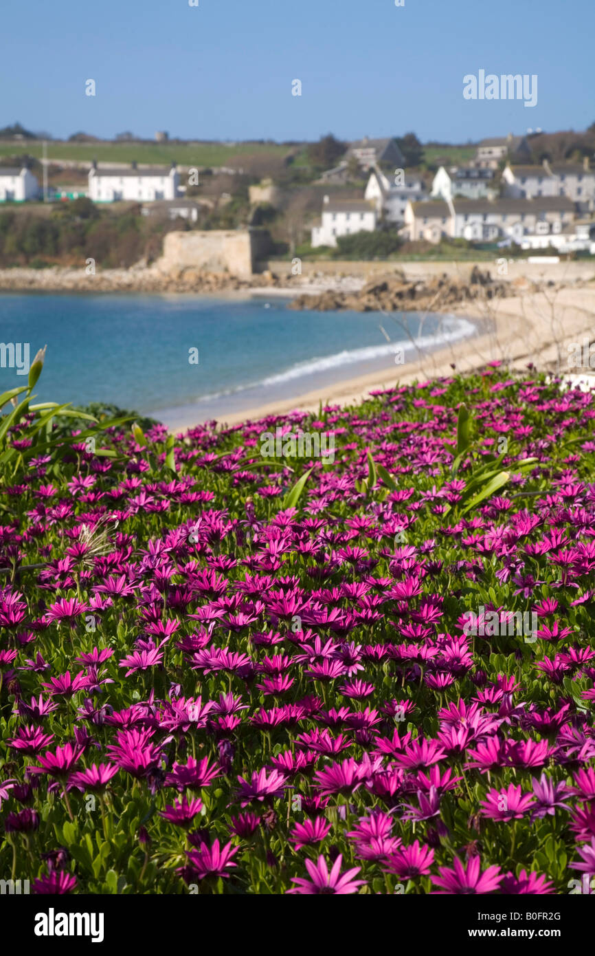 hugh town st mary s Isles of Scilly - Stock Image