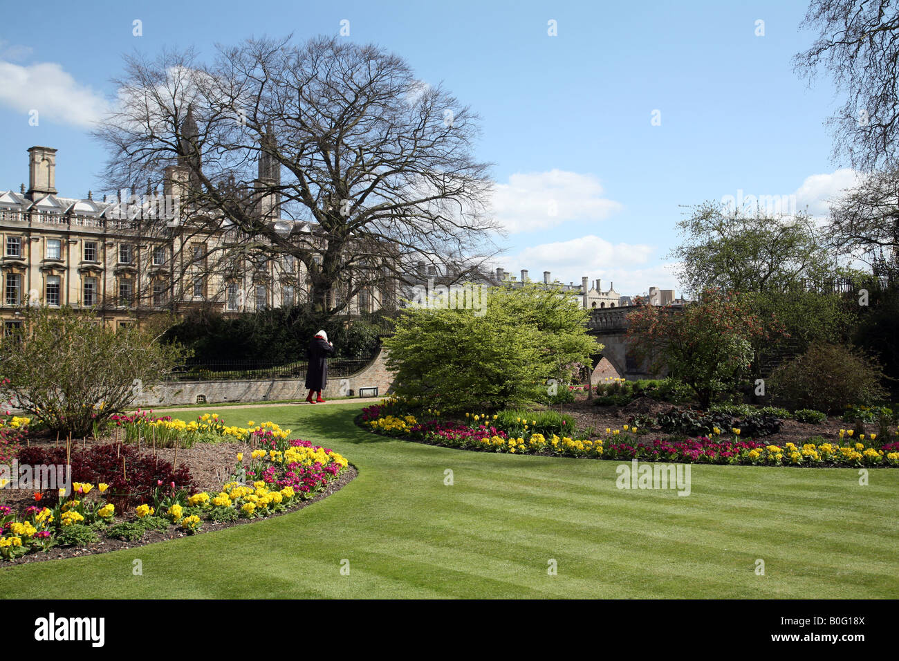 Clare College, Cambridge seen from the Fellows Garden on a fine spring morning - Stock Image