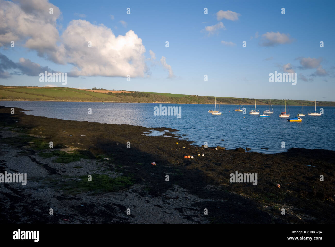 View from Feock over Carrick Roads to Roseland Peninsular Stock Photo