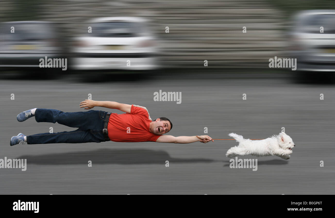 Disobedient dog running and dragging a man by the leash - Stock Image
