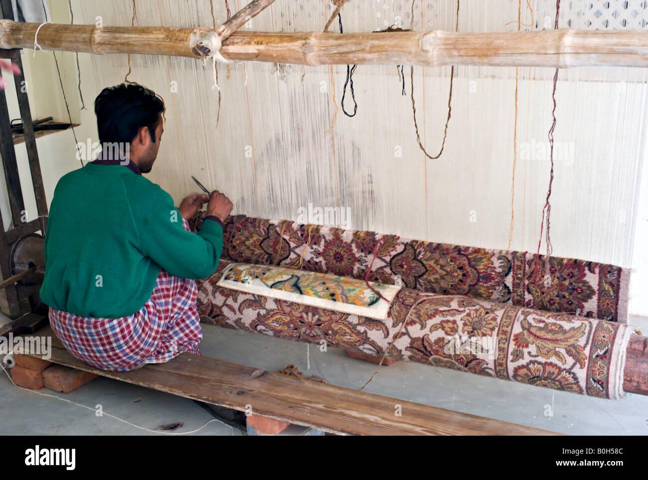 India Jaipur Young Indian Craftsman Working With A Pattern And Wool