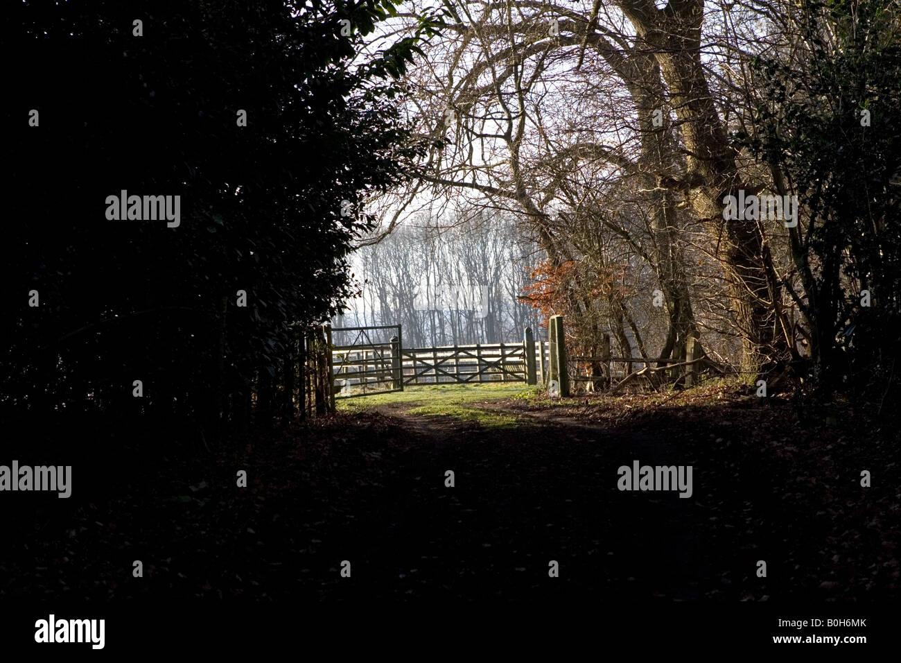 A rural scene in the countryside near Medmenham in Buckinghamshire, England. Stock Photo