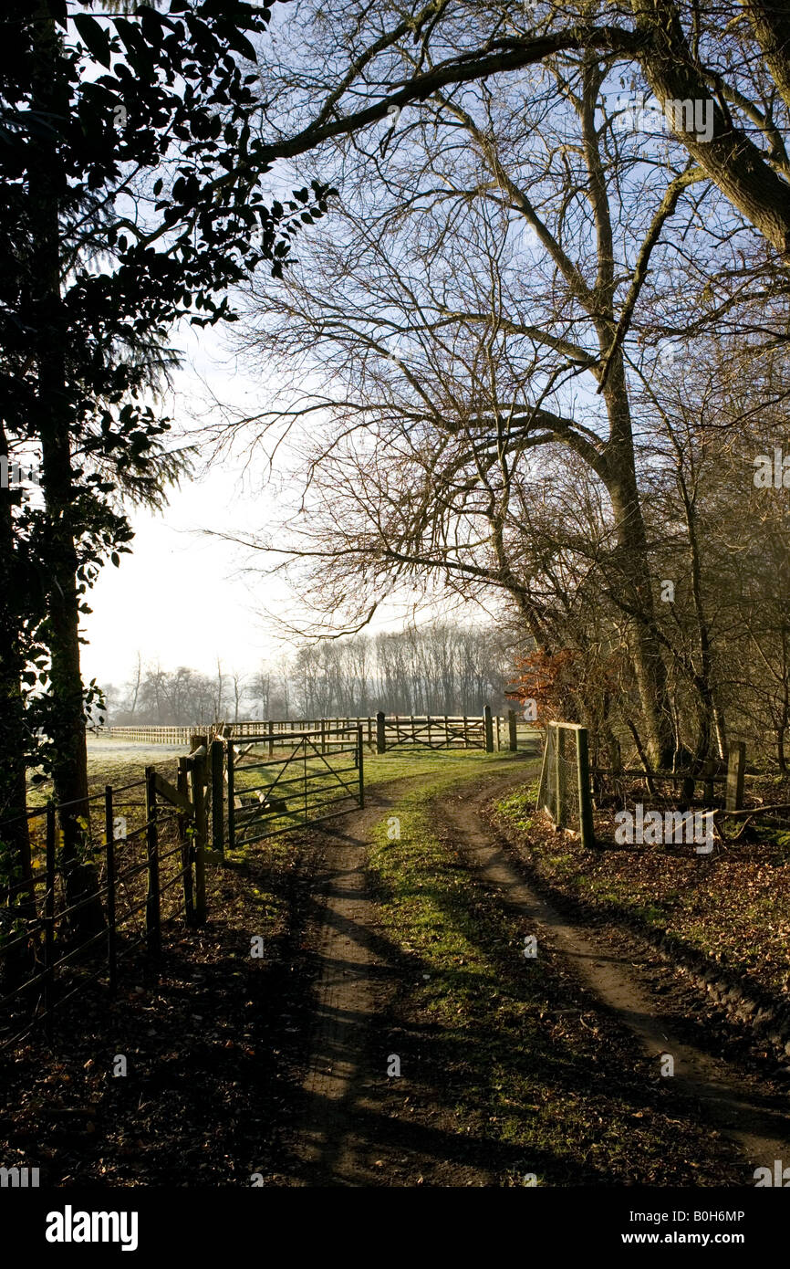A rural scene in the countryside near Medmenham in Buckinghamshire, England. Stock Photo