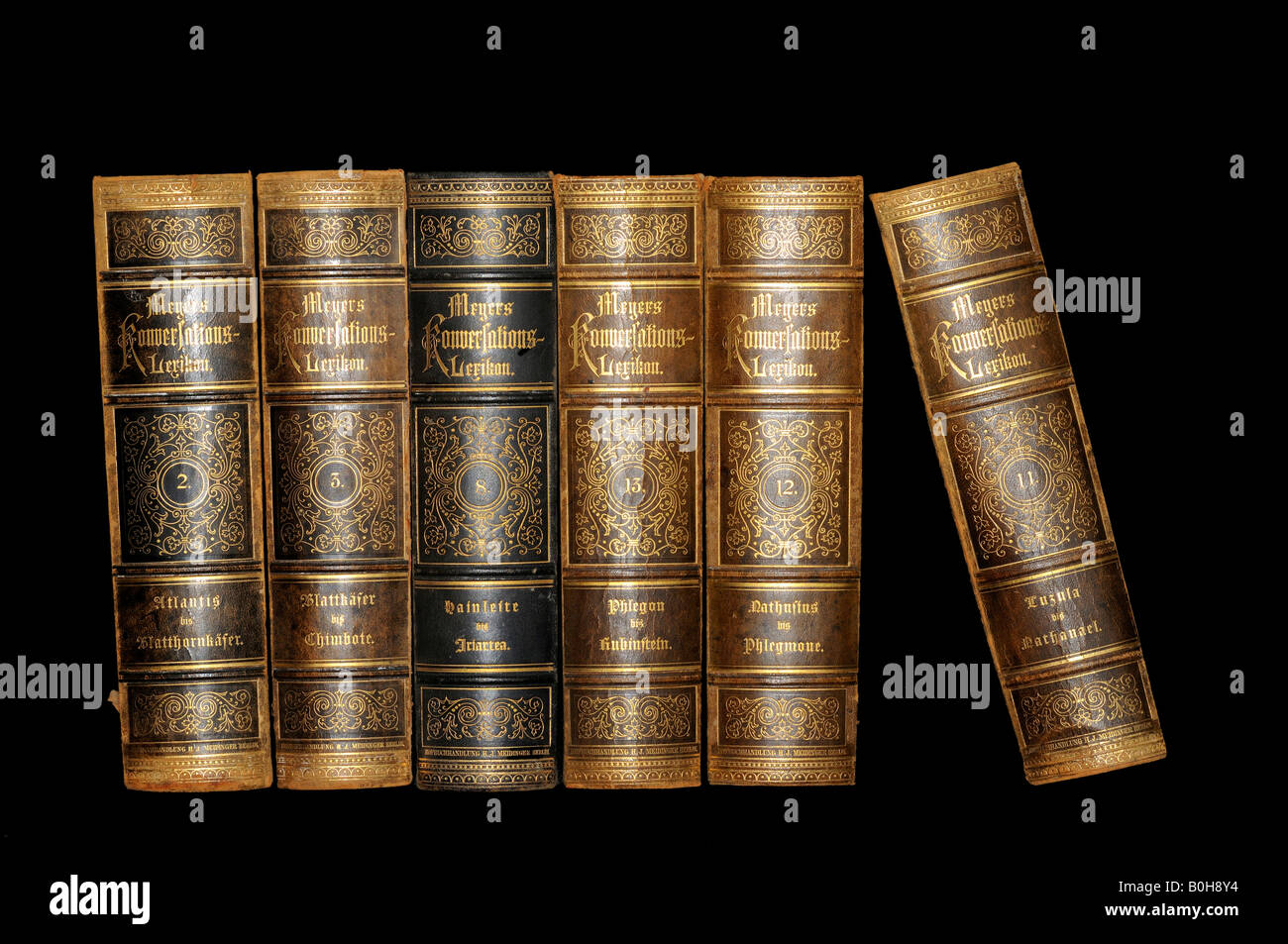 Old leather bound encyclopaedia - Stock Image