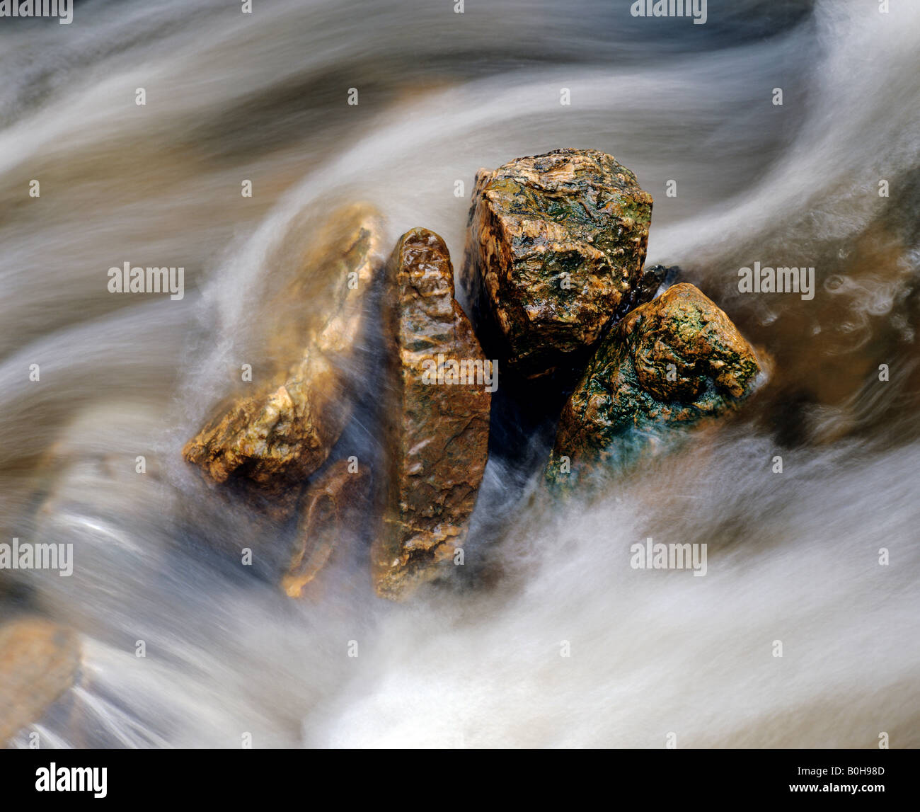 Gold gleaming stones in a fast-flowing stream - Stock Image