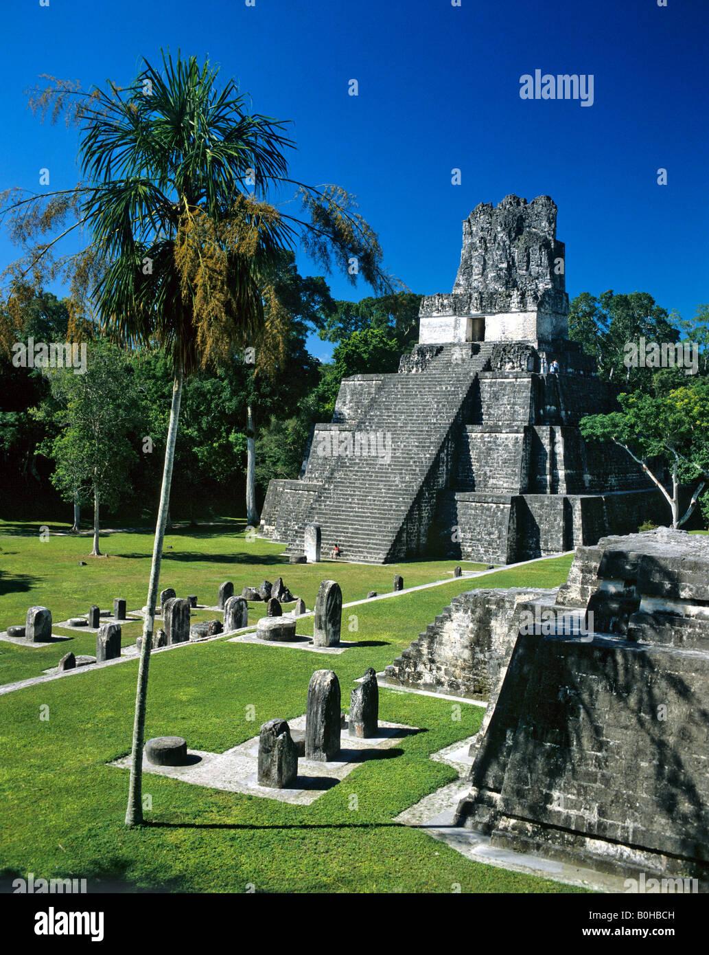 Temple ruins of Tikal, Maya pyramid, Guatemala, Guatemala, Central America - Stock Image