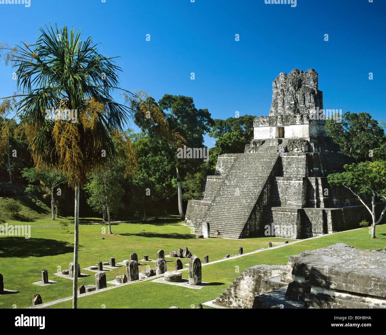 Temple ruins of Tikal, Maya pyramid, Guatemala, Central America - Stock Image