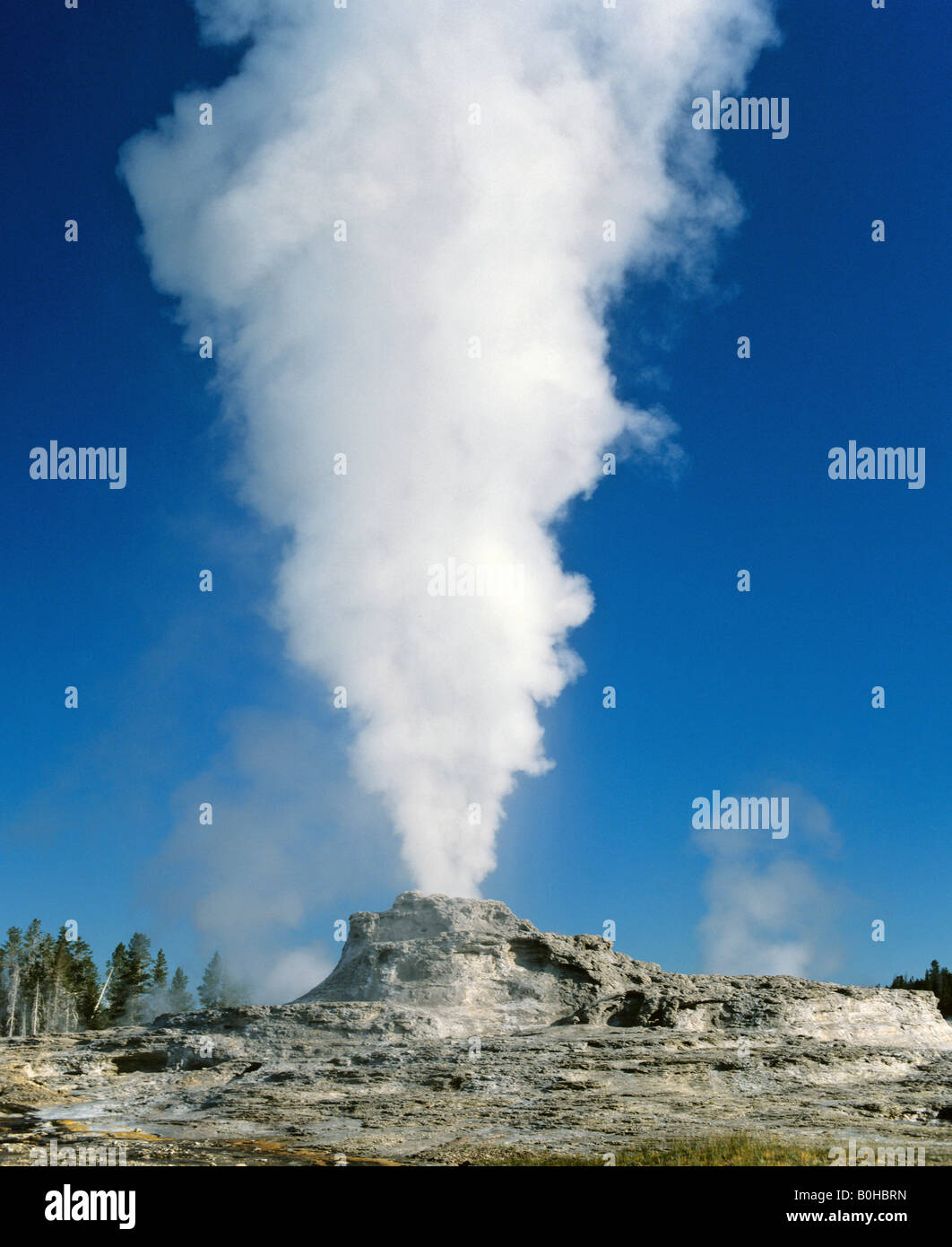 Steam rising from Castle Geyser, Yellowstone National Park, Rocky Mountains, Wyoming, USA - Stock Image