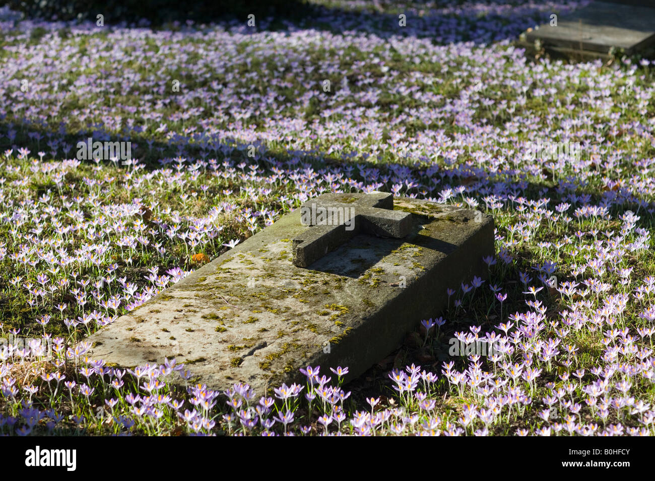 how to put flowers on a grave