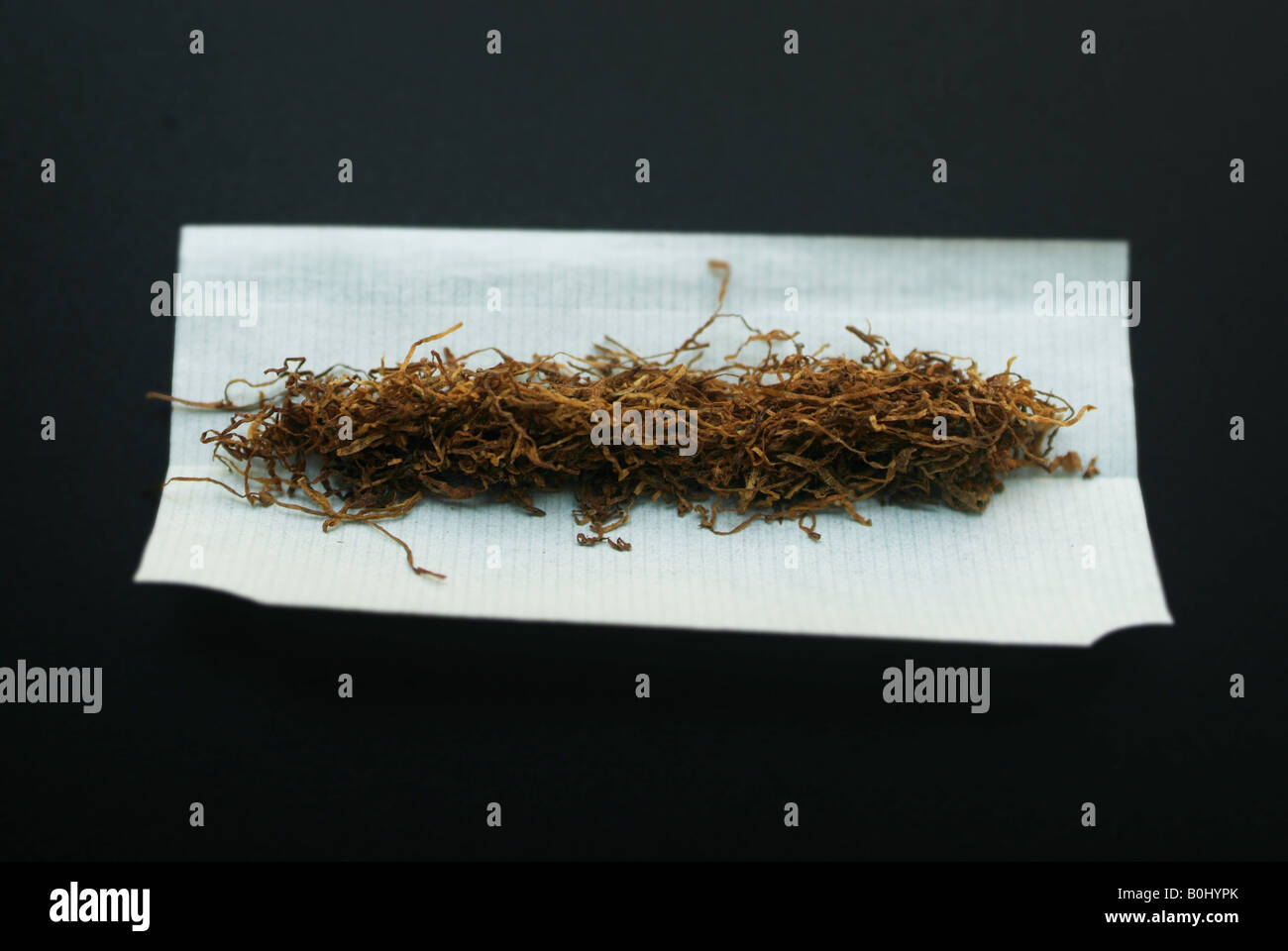 Essay on smoking cigarettes