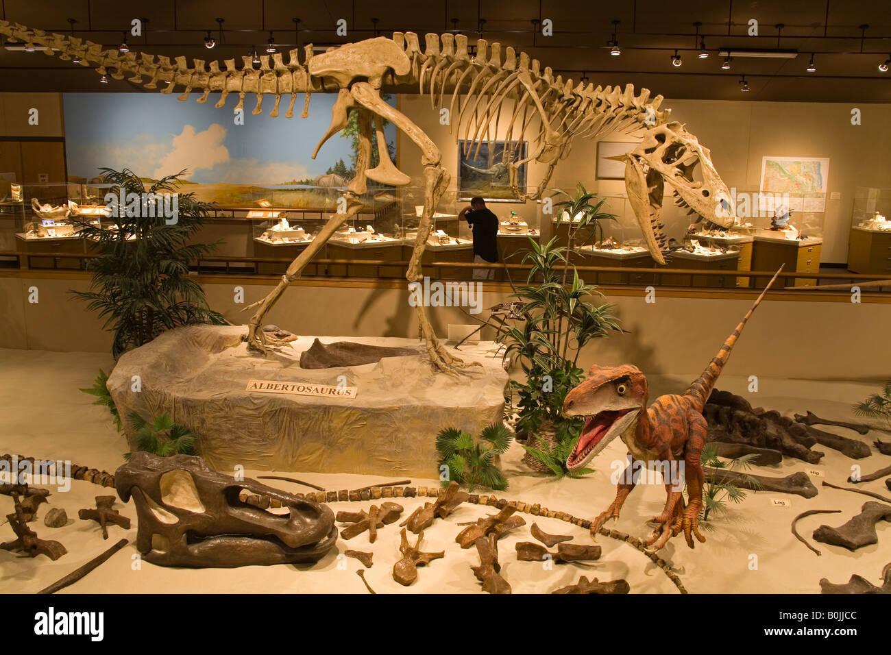Dakota Dinosaur Museum Dickinson North Dakota USAStock Photo