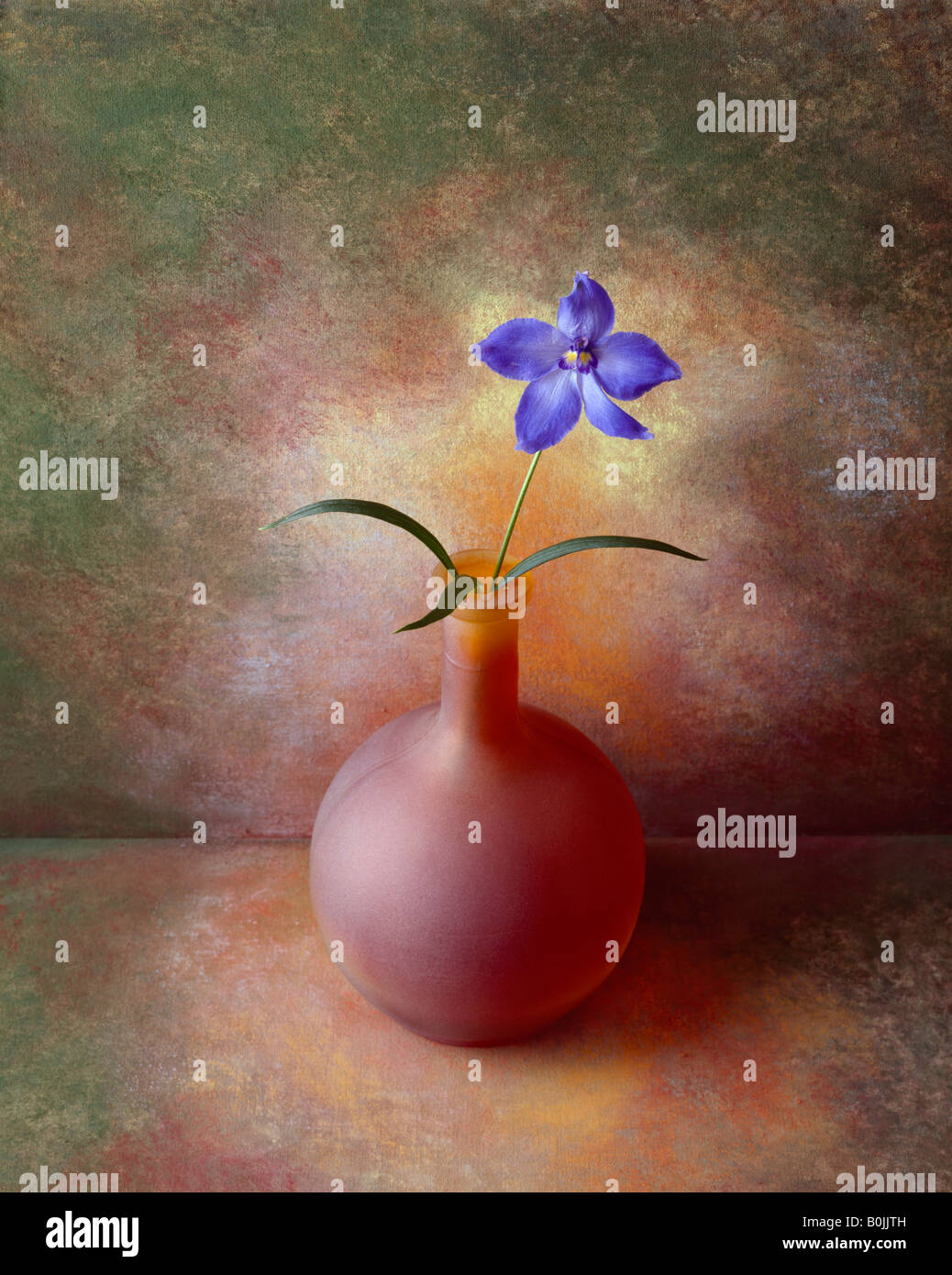 a colour picture of a flower in a vase against a hand painted background - Stock Image