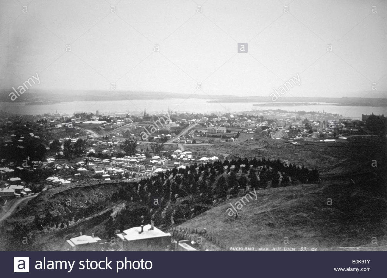 Auckland from Mt Eden, New Zealand, 1899. - Stock Image