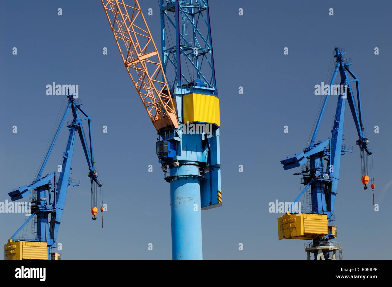 Harbor cranes in the Hamburg harbor - Stock Image