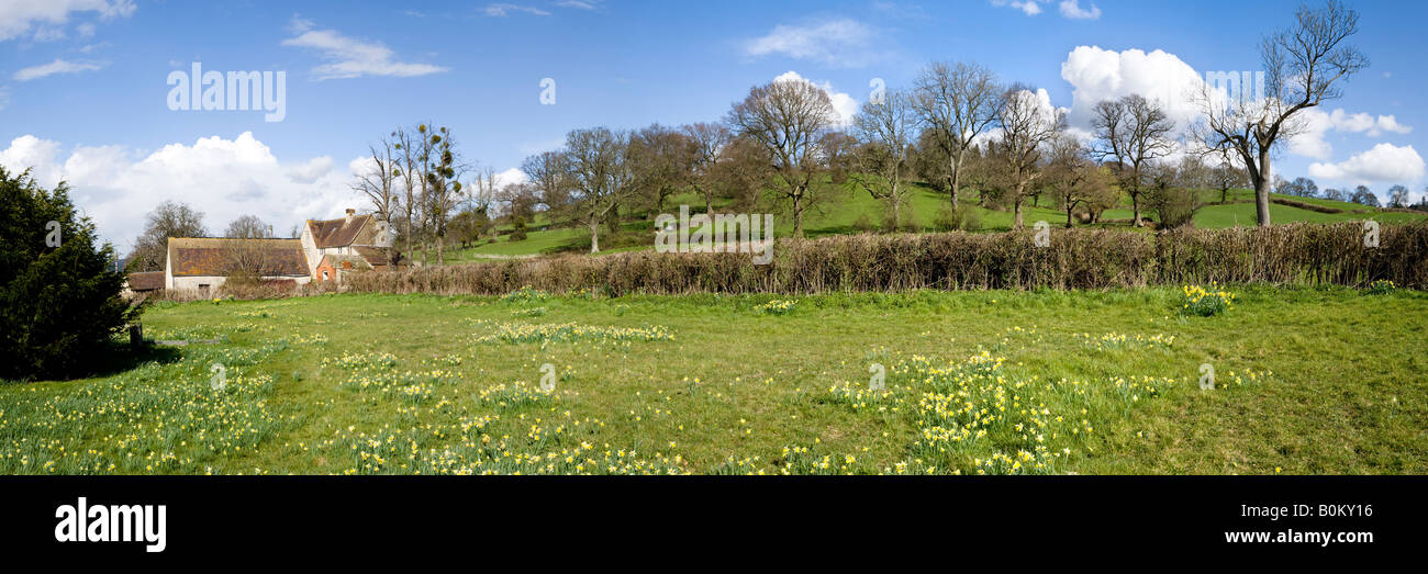 Springtime at the foot of the Cotswold scarp from the churchyard in the village of Harescombe, Gloucestershire - Stock Image