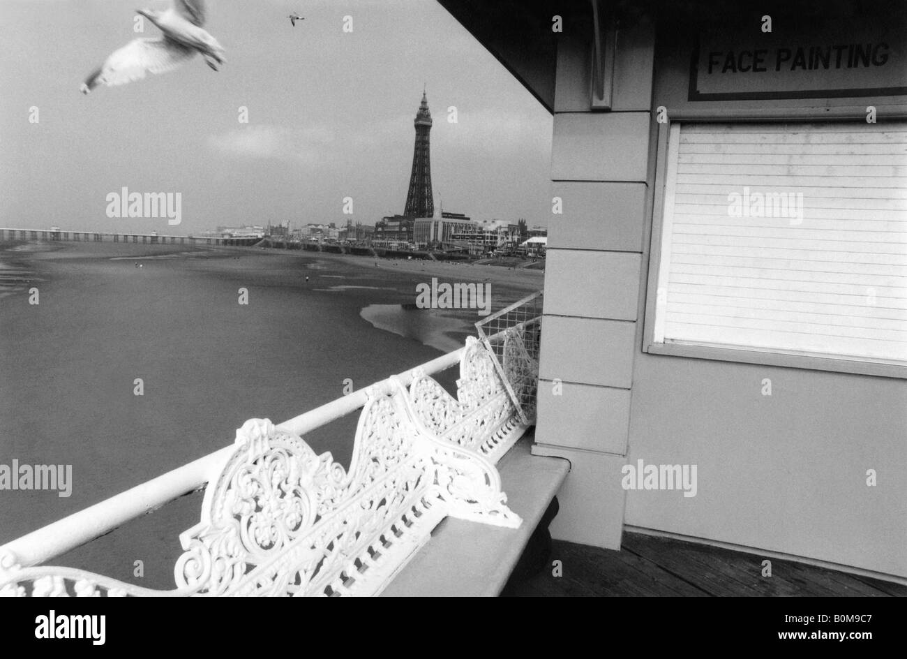 Blackpool Pier & Tower with Seagull, Blackpool, England, UK. - Stock Image