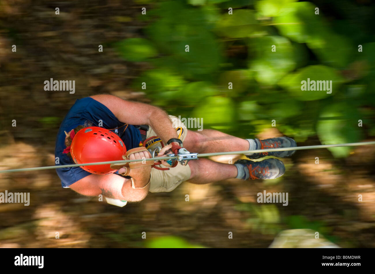 COSTA RICA Man in motion zip lining over jungle canopy. Pacuare River Lodge. Caribbean Slope - Stock Image