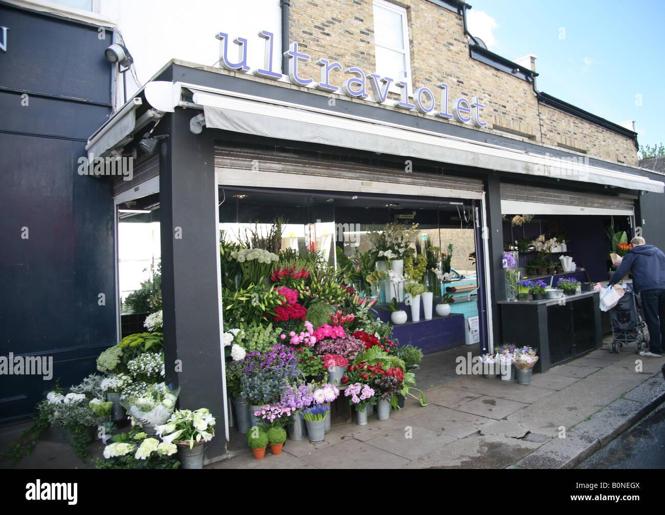 Ultraviolet Florists Northcote Road London - Stock Image
