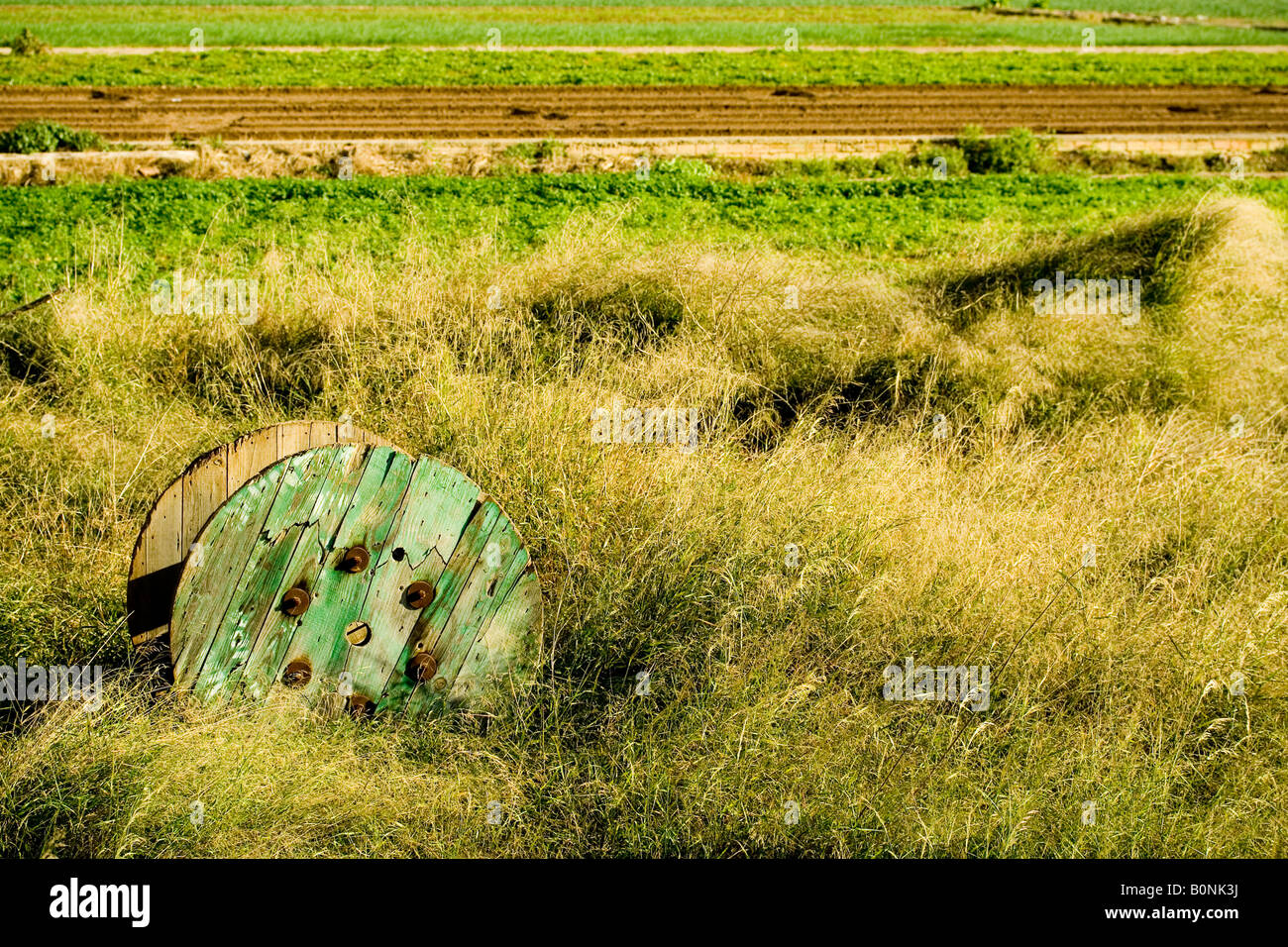 periphery, field, tractor mark - Stock Image