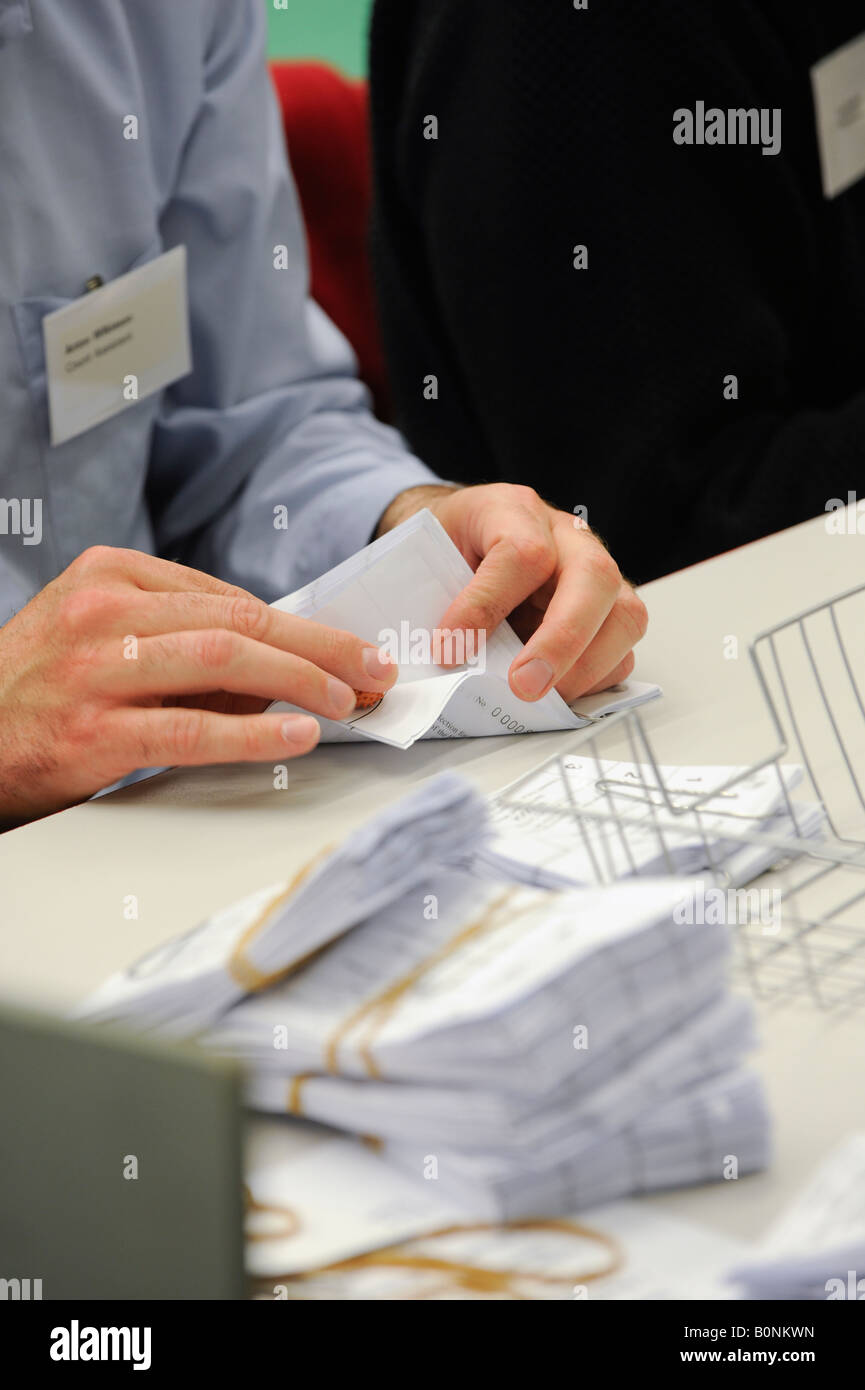 Voting slips are verified before being counted on count night at Hastings local election count. Picture by Jim Holden. - Stock Image