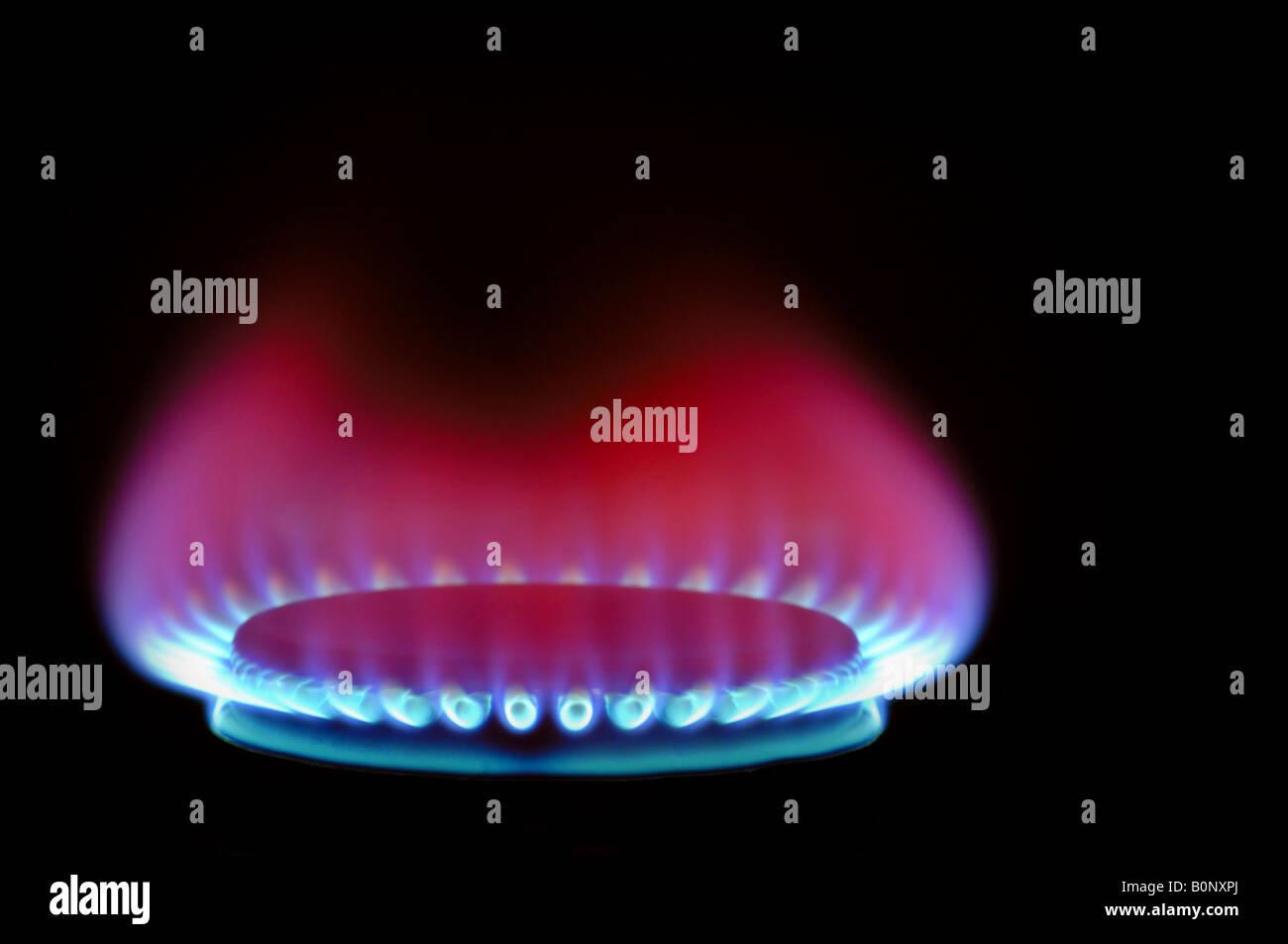 Gas flame - Stock Image