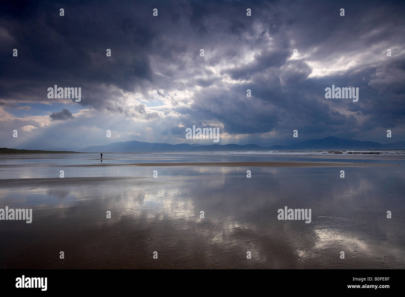 a solitary figure on the beach, Inch Strand, Dingle Peninsula, County Kerry, Ireland - Stock Image