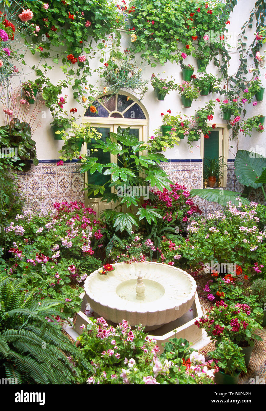 Typical flowered courtyard. Cordoba. Andalusia. Spain. - Stock Image