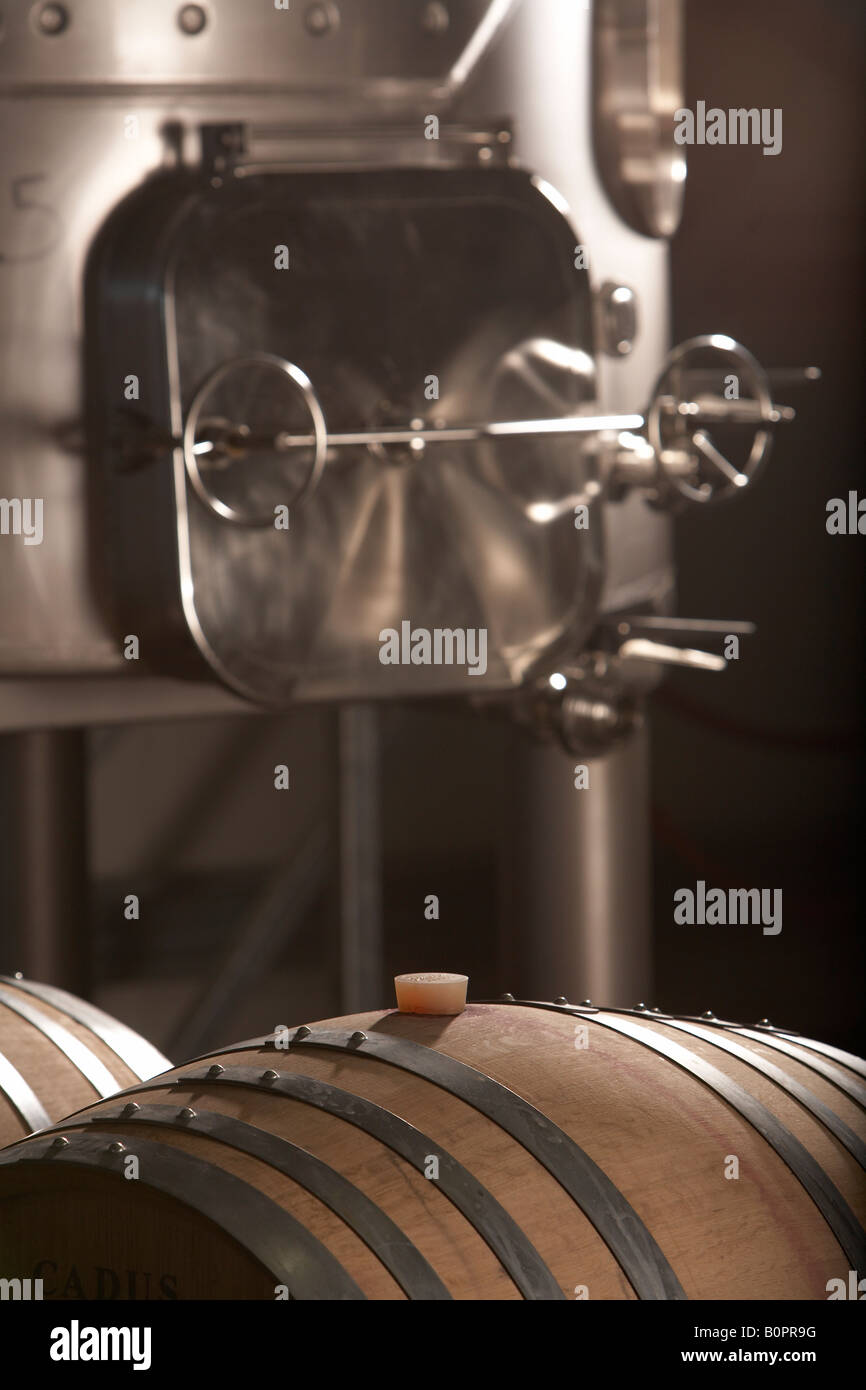 celler in winery with barrel and stainless steel vat - Stock Image