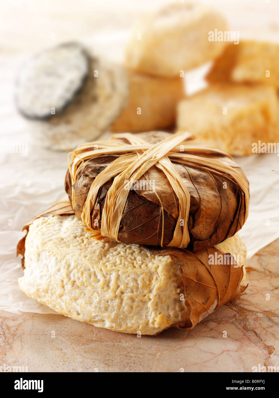 Regional French Cheeses - From Top - Bannon, Normandy Chevre, - Stock Image