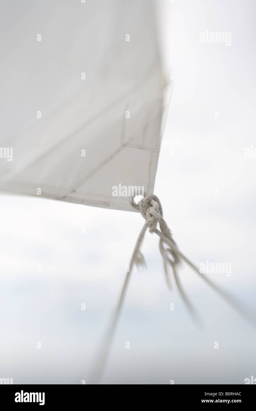sail blurry shallow focus sailboat sailing wind sheet jib jibe - Stock Image