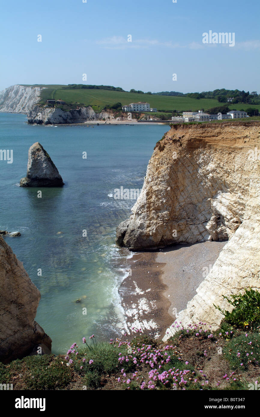 Chalk cliffs at Freshwater Bay situated on the south of the island Isle of Wight England UK Low tide - Stock Image