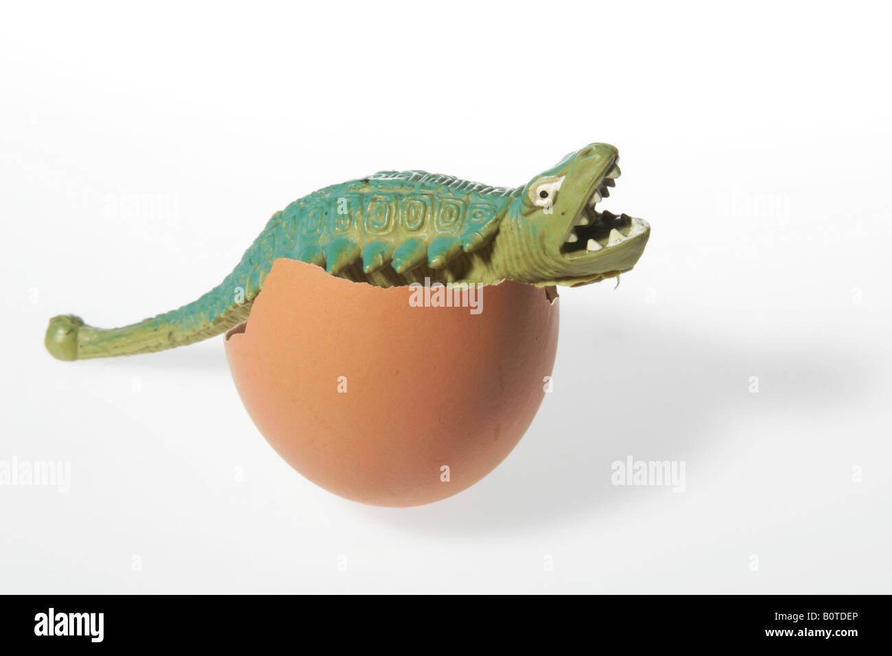 dinosaur hatchling - Stock Image