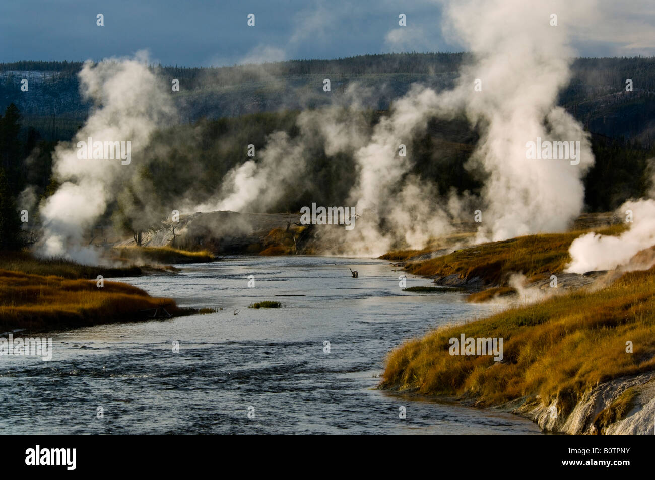 Geothermal vents and steam along the Firehole River Upper Geyser Basin Yellowstone National Park Wyoming Stock Photo