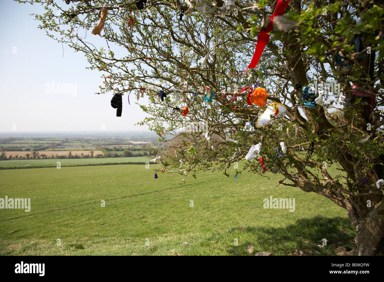 offerings attached to a fairy thorn tree on the hill of tara in county meath republic of ireland - Stock Image