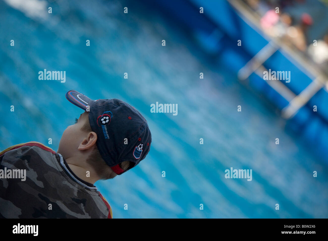 Boy on holiday watching sea life show - Stock Image