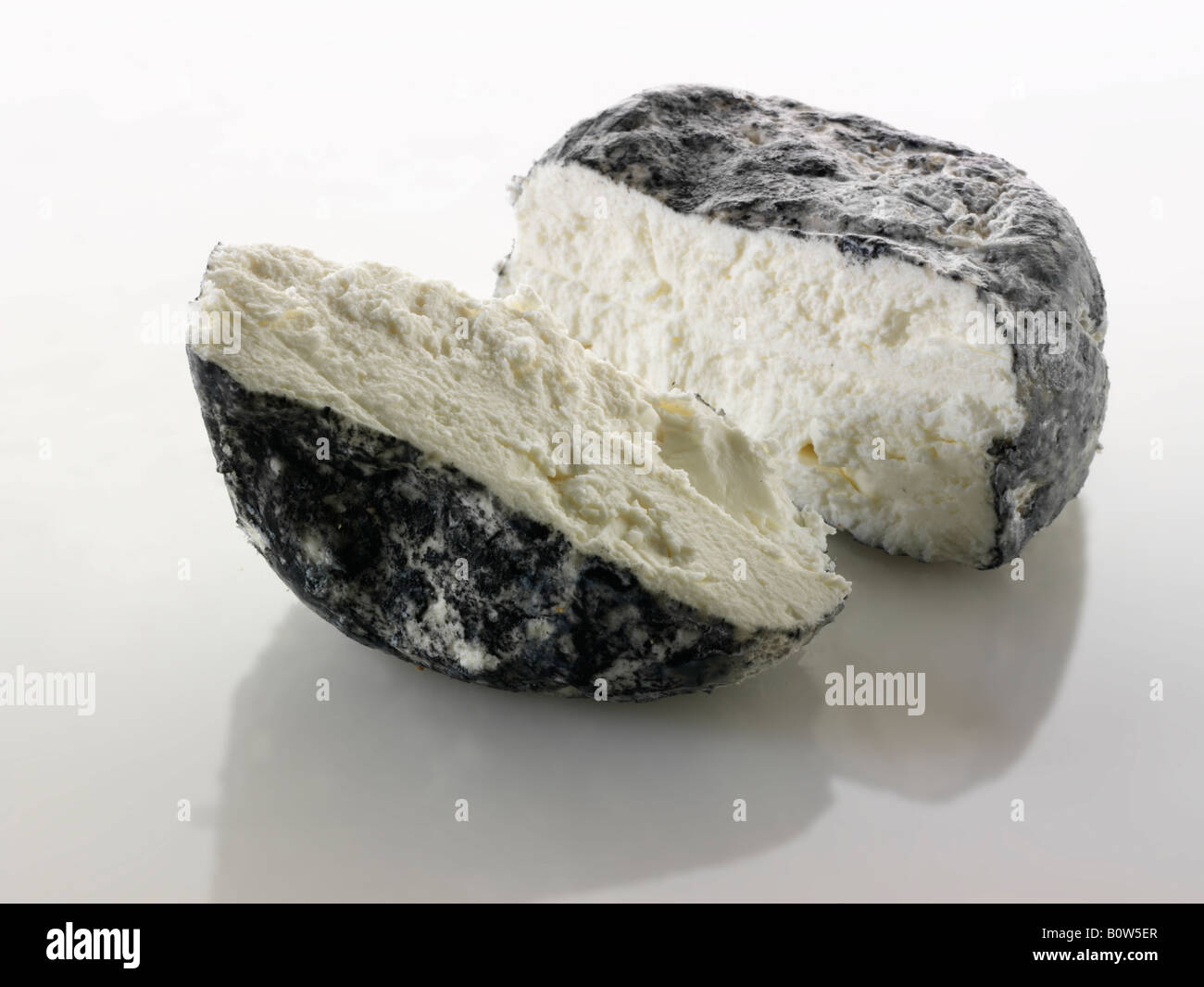 Cinder Chevre cheese from France on a white background - Stock Image