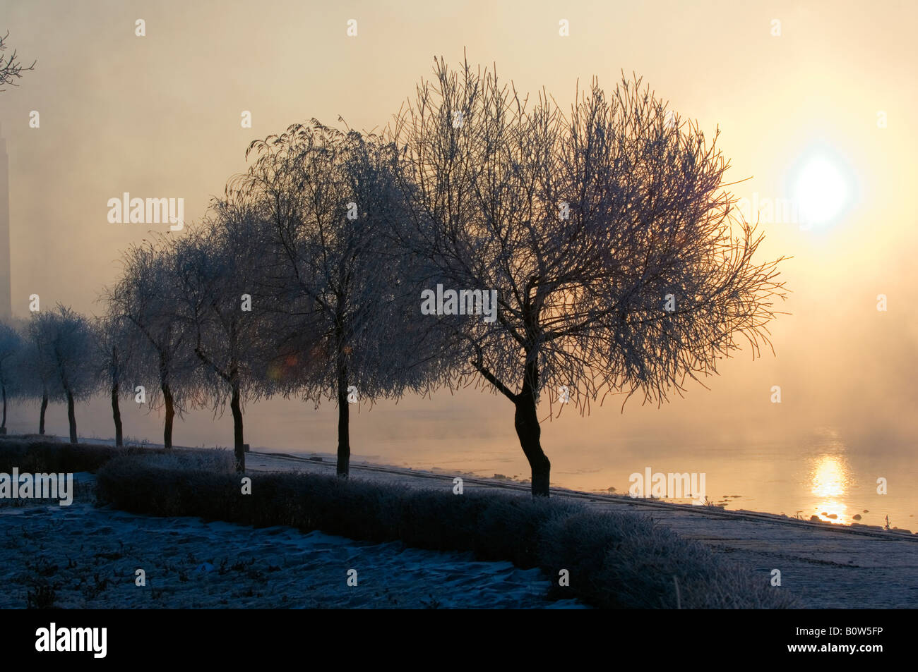 mist rising off Songhua River and ice covered trees in winter Jilin City Jilin Province Northeast China - Stock Image