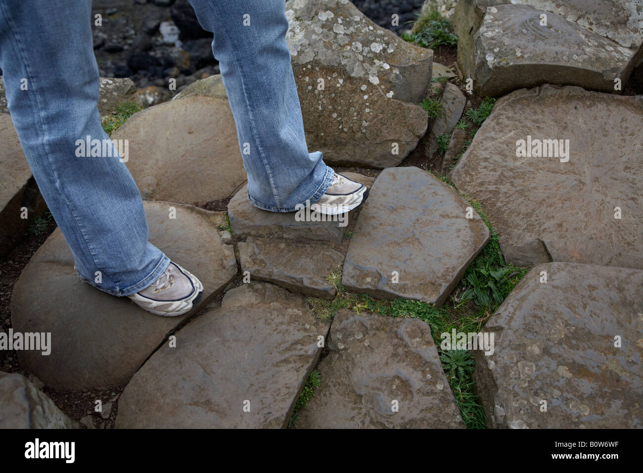 womans legs wearing jeans and old trainers on red basalt hexagonal rock formations at the giants causeway county - Stock Image