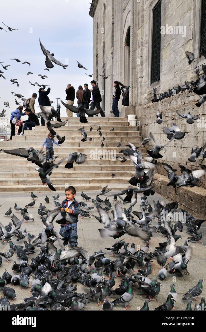 Boy chasing pigeons in front of a mosque in Istanbul, Turkey Stock Photo